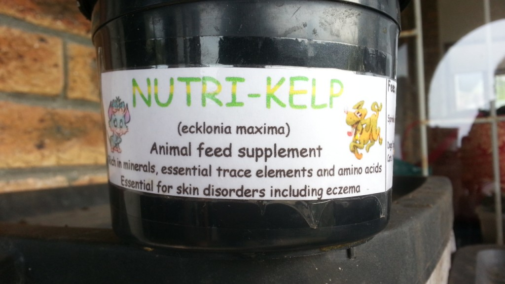 Kelp Supplement for Animals